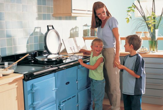 How much does it cost to service a AGA?